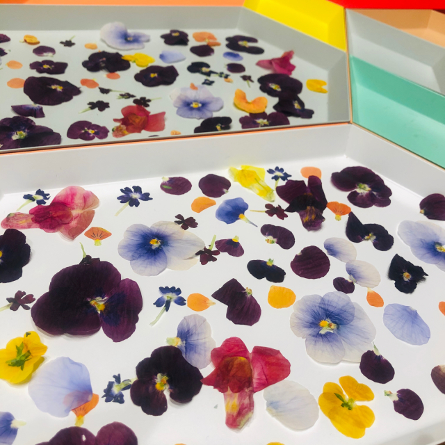 Edible Pressed Flowers_e0309971_20341589.jpg
