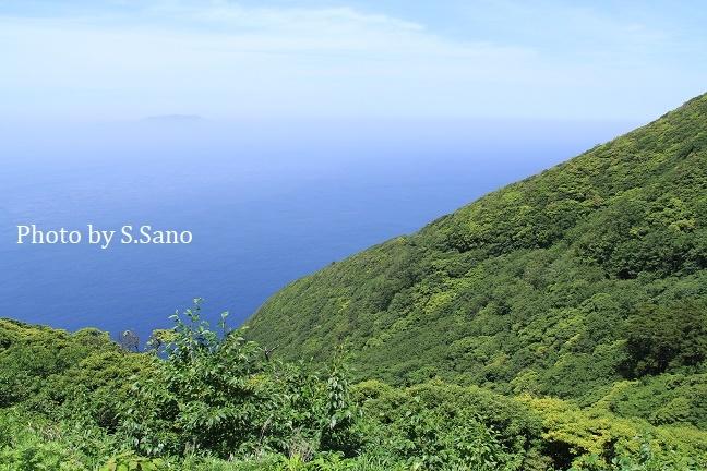 ミクラミヤマクワガタと神山の結界_b0348205_11102354.jpg