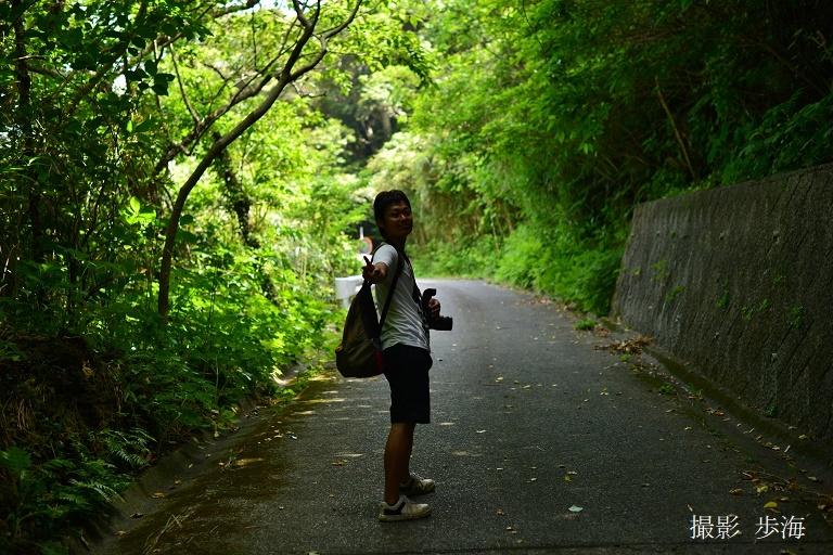 ミクラミヤマクワガタと神山の結界_b0348205_11125288.jpg