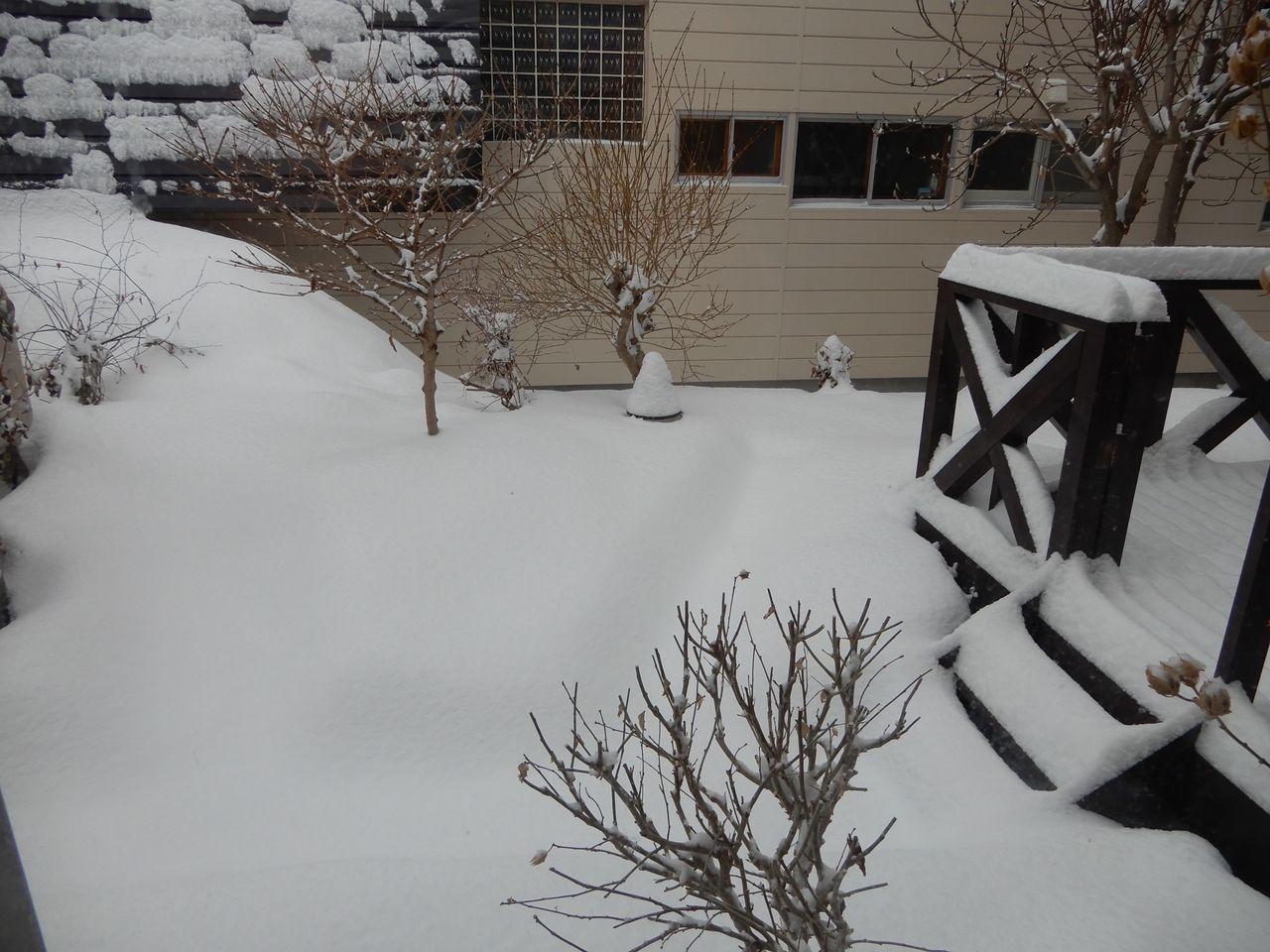 また15センチ位の積雪しかも除雪車が重い雪を置いていく_c0025115_22134082.jpg