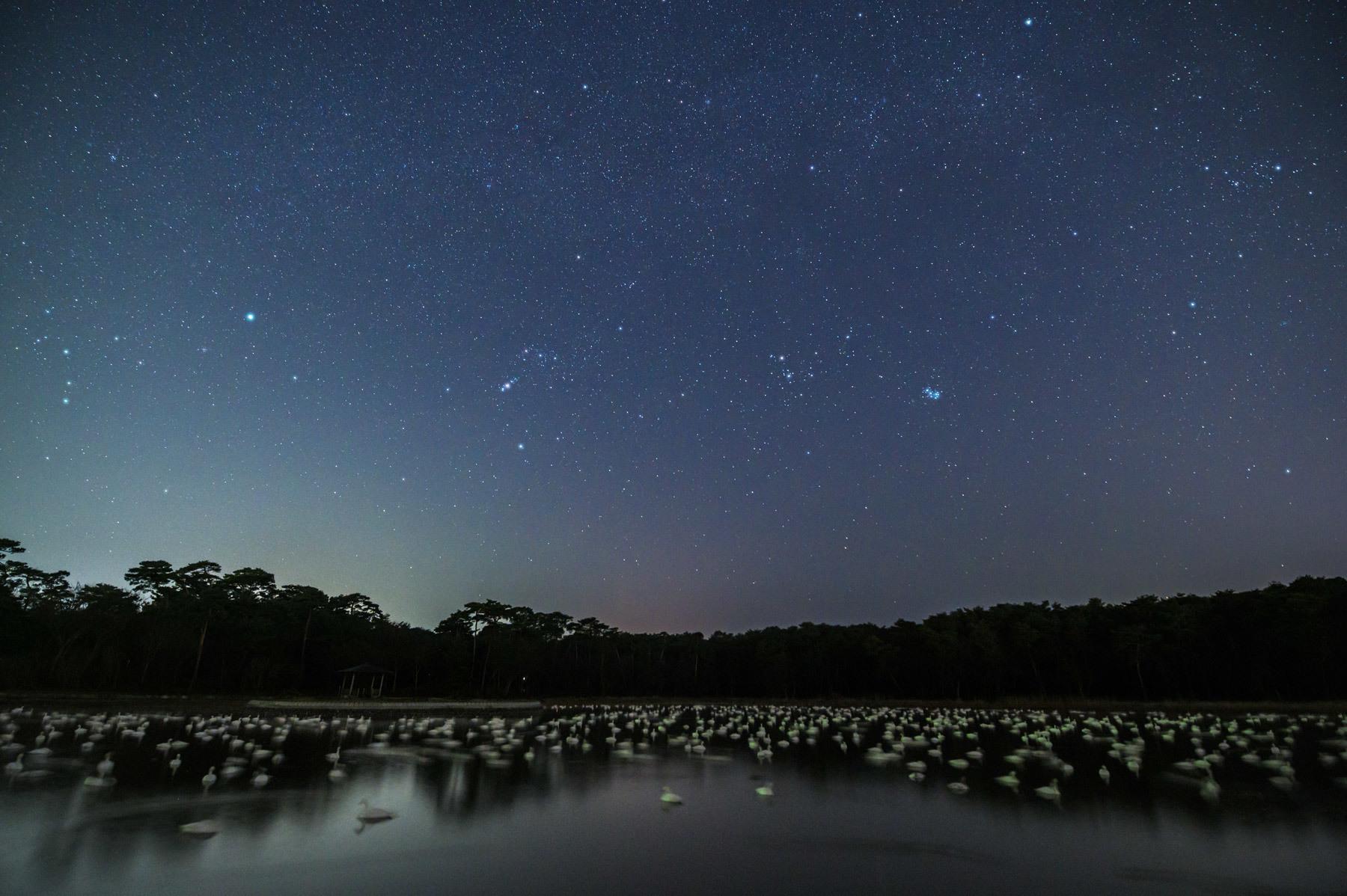 ときには星の下で眠る_a0041722_22352748.jpg