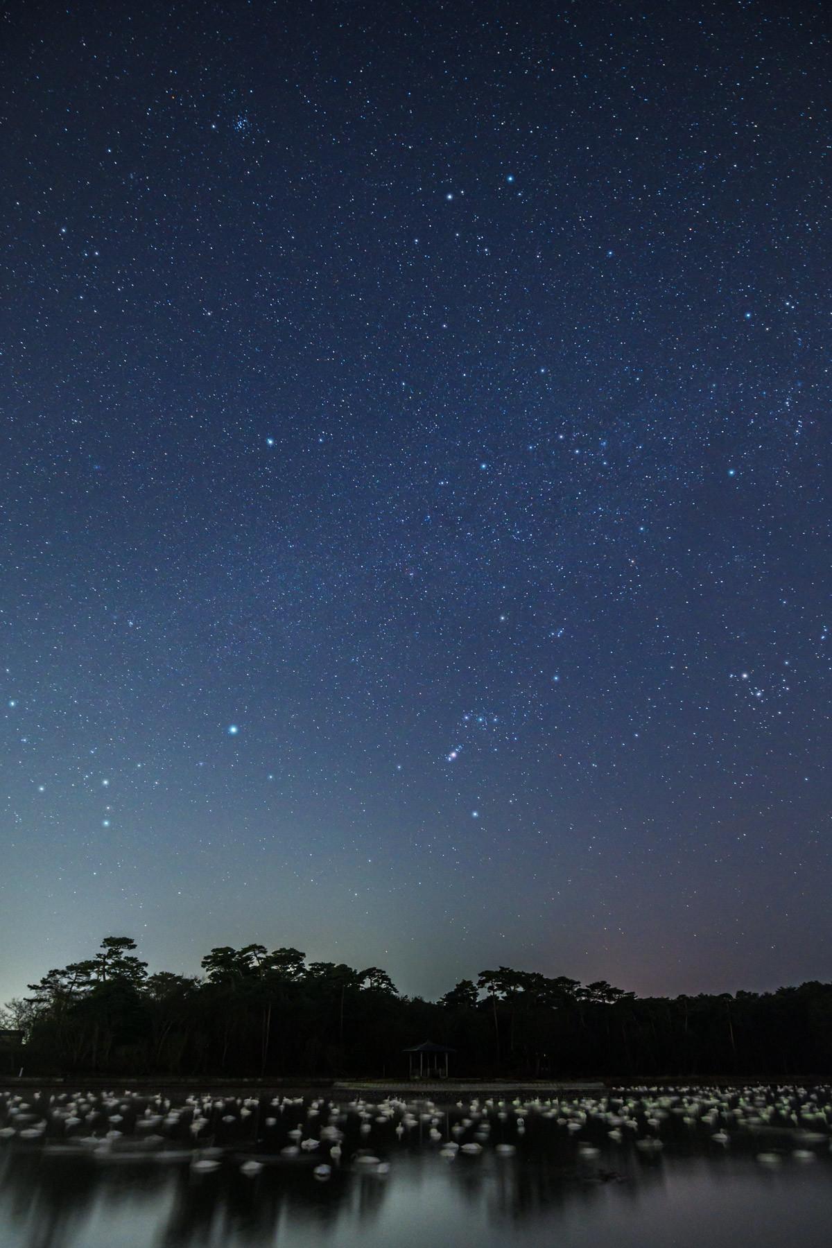 ときには星の下で眠る_a0041722_22353004.jpg