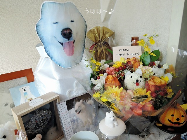 花咲か爺ちゃん_c0062832_14533154.jpg