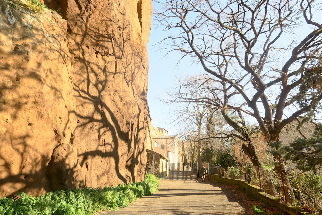 断崖に木の影踊るオルヴィエート_f0234936_819832.jpg