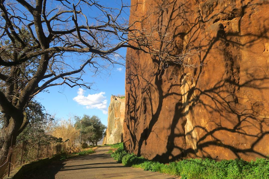 断崖に木の影踊るオルヴィエート_f0234936_8221924.jpg