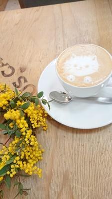 ミモザリース作りプラスカフェで朝活_f0365636_15572703.jpg