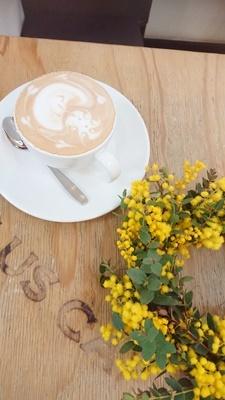 ミモザリース作りプラスカフェで朝活_f0365636_15580532.jpg