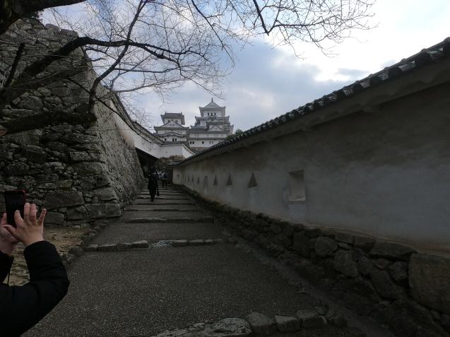 兵庫県  umenai_c0155239_16233406.jpg