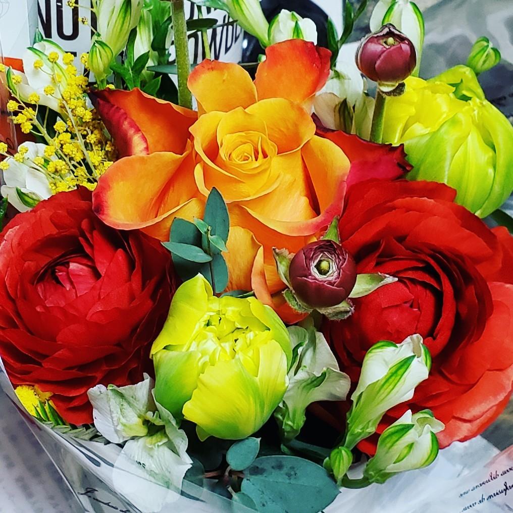 花に癒されます_a0105740_07314885.jpg
