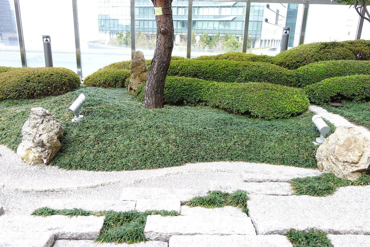 大阪ステーションシティ 和らぎの庭_c0112559_08172176.jpg