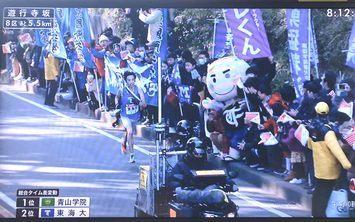 箱根駅伝の8区に・・・_c0051760_16322861.jpg