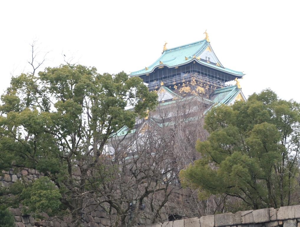 大阪城公園まで梅林を見る旅_d0202264_964758.jpg