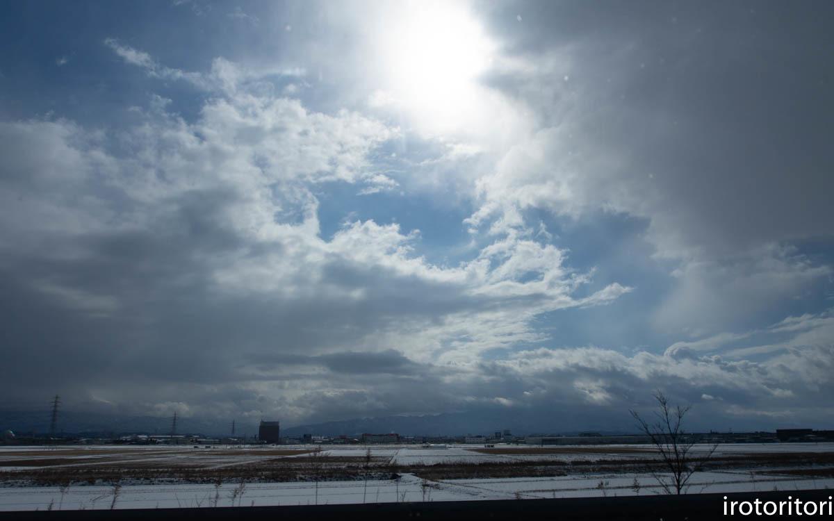 新潟 その2  (ハクチョウ・カモ)  2020/02/11_d0146592_00184073.jpg