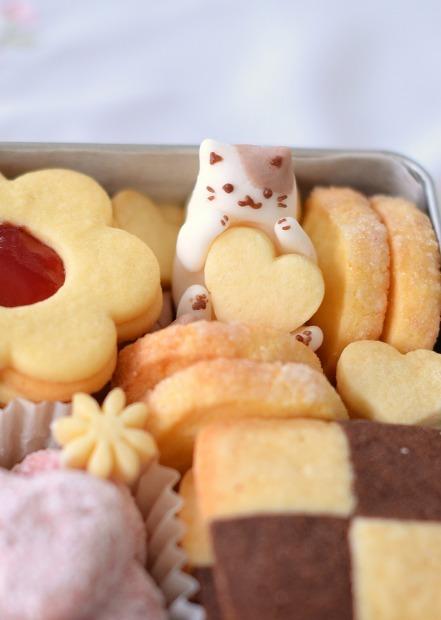 猫クッキー缶_d0025294_17452643.jpg