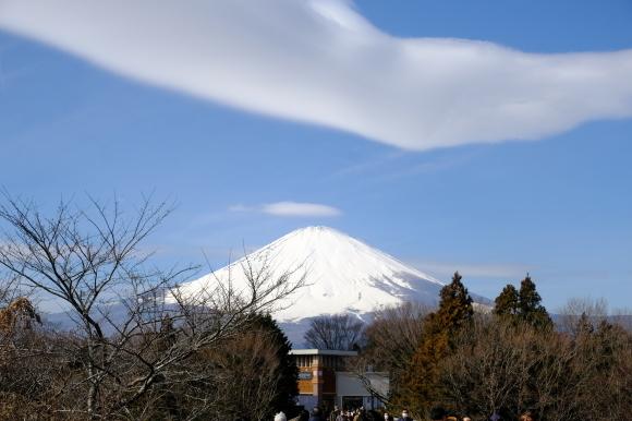 最乗寺と明神が岳_e0000910_11343666.jpg