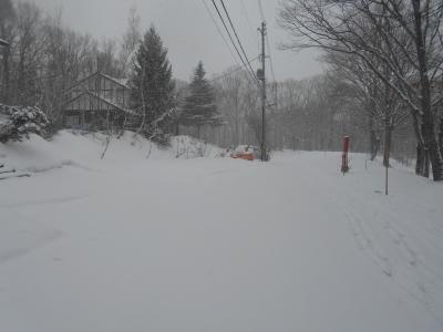 2月18日 火曜日 -2 雪_f0210811_07582952.jpg