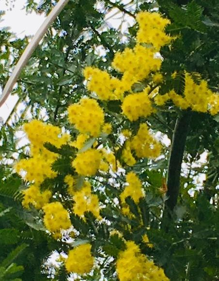春までゆっくり NO.673_c0102513_20064001.jpeg