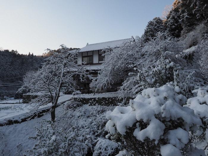 家の周りの雪景色_c0116915_23381201.jpg