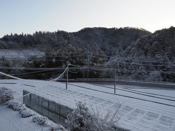 雪景色の田んぼ_c0116915_23414353.jpg