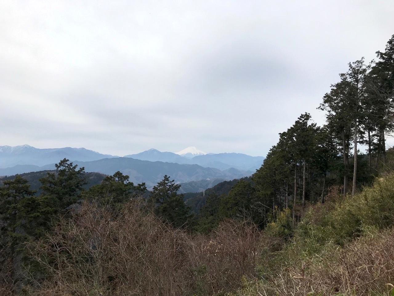 「高尾山」〜「陣馬山」_d0056527_07571076.jpg