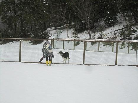 雪のランで走ったよ~♪_b0177436_21133729.jpg
