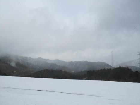 雪のランで走ったよ~♪_b0177436_21170522.jpg