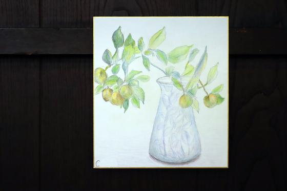 色鉛筆画 ~ 金柑スケッチ ~_e0222340_1558457.jpg