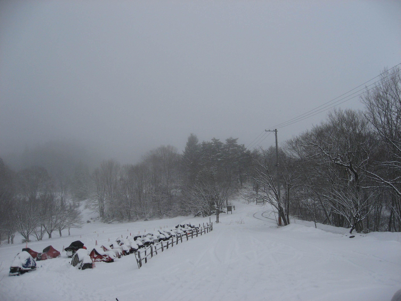 雪降り_b0365347_16535249.jpg