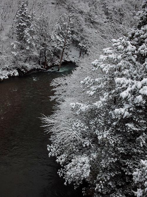 雪でした・・・針畑_d0005250_1951432.jpg