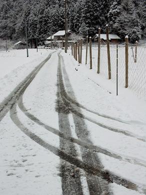 雪でした・・・針畑_d0005250_19545825.jpg