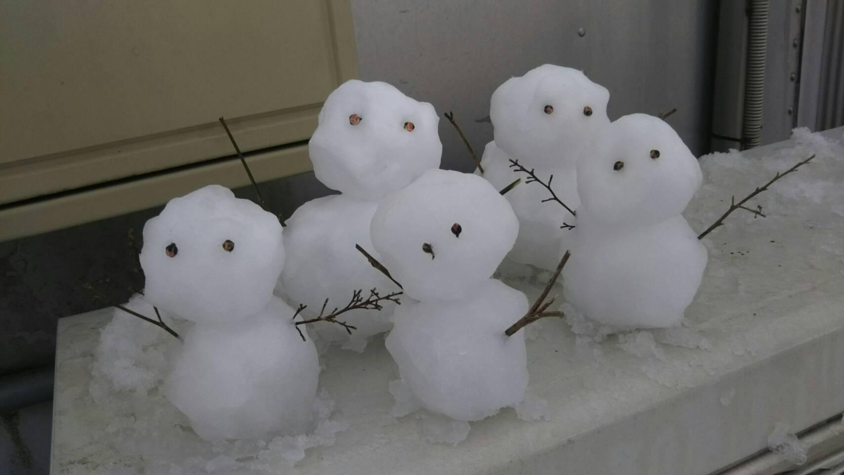 鳥取も雪…寒がりやの山田パンダ_b0096957_19320482.jpg