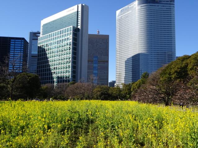 早春の「コンラッド東京」 (1)_b0405262_22304235.jpg