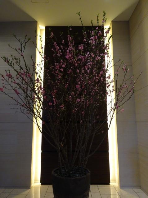 早春の「コンラッド東京」 (1)_b0405262_22311699.jpg