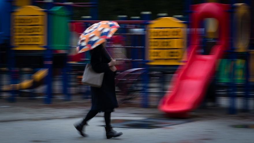 雨に負けない色たち_d0353489_23191507.jpg