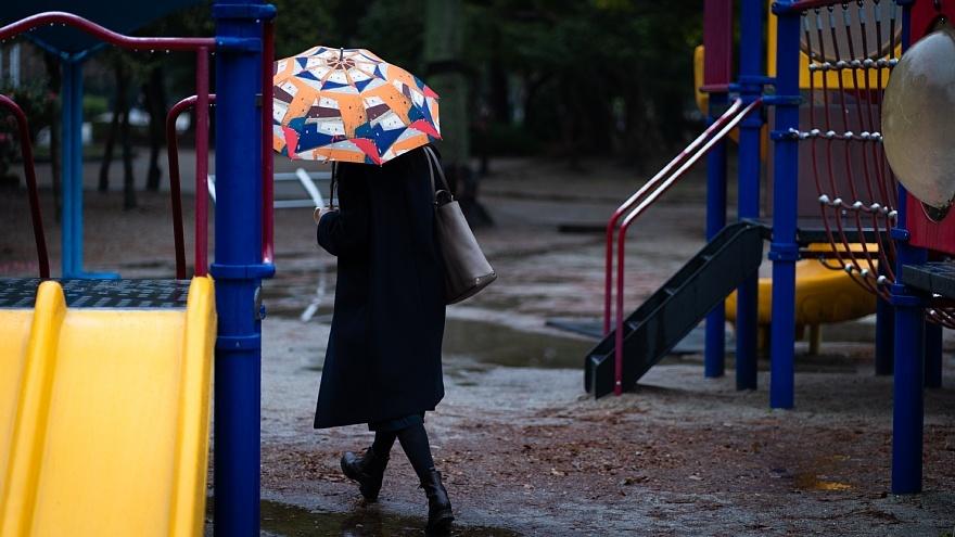 雨に負けない色たち_d0353489_23194106.jpg