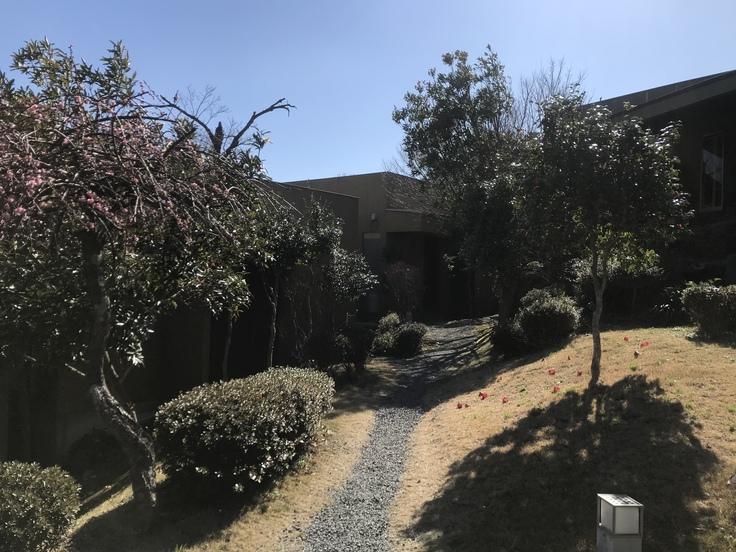 源泉と離れの宿 月(ごはん編)_c0212604_6525563.jpg