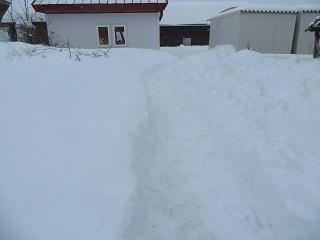 大雪が降ったときの二択_b0405523_07411186.jpg