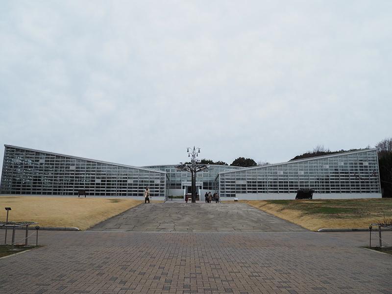 Hello from Tokyo 119 神大植物公園・大温室_a0003650_22303035.jpg