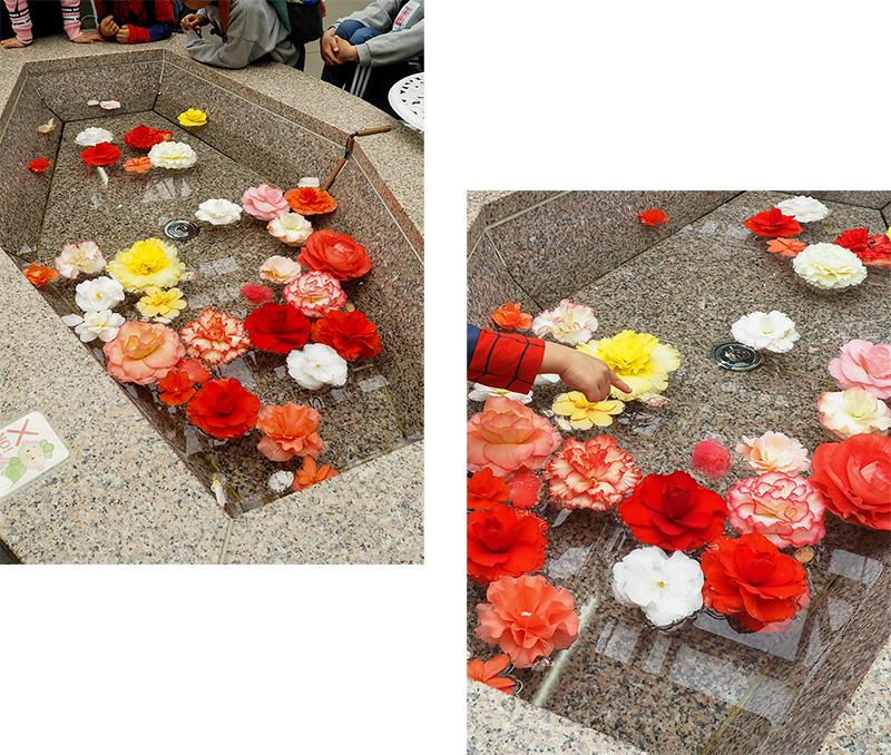 Hello from Tokyo 119 神大植物公園・大温室_a0003650_22384706.jpg