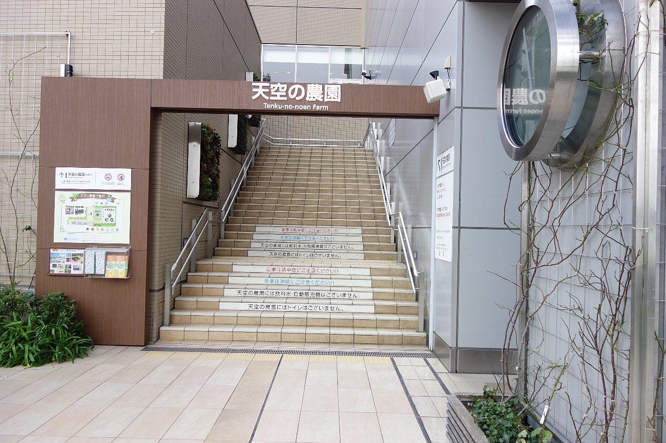 大阪ステーションシティ  天空の農園_c0112559_08542542.jpg