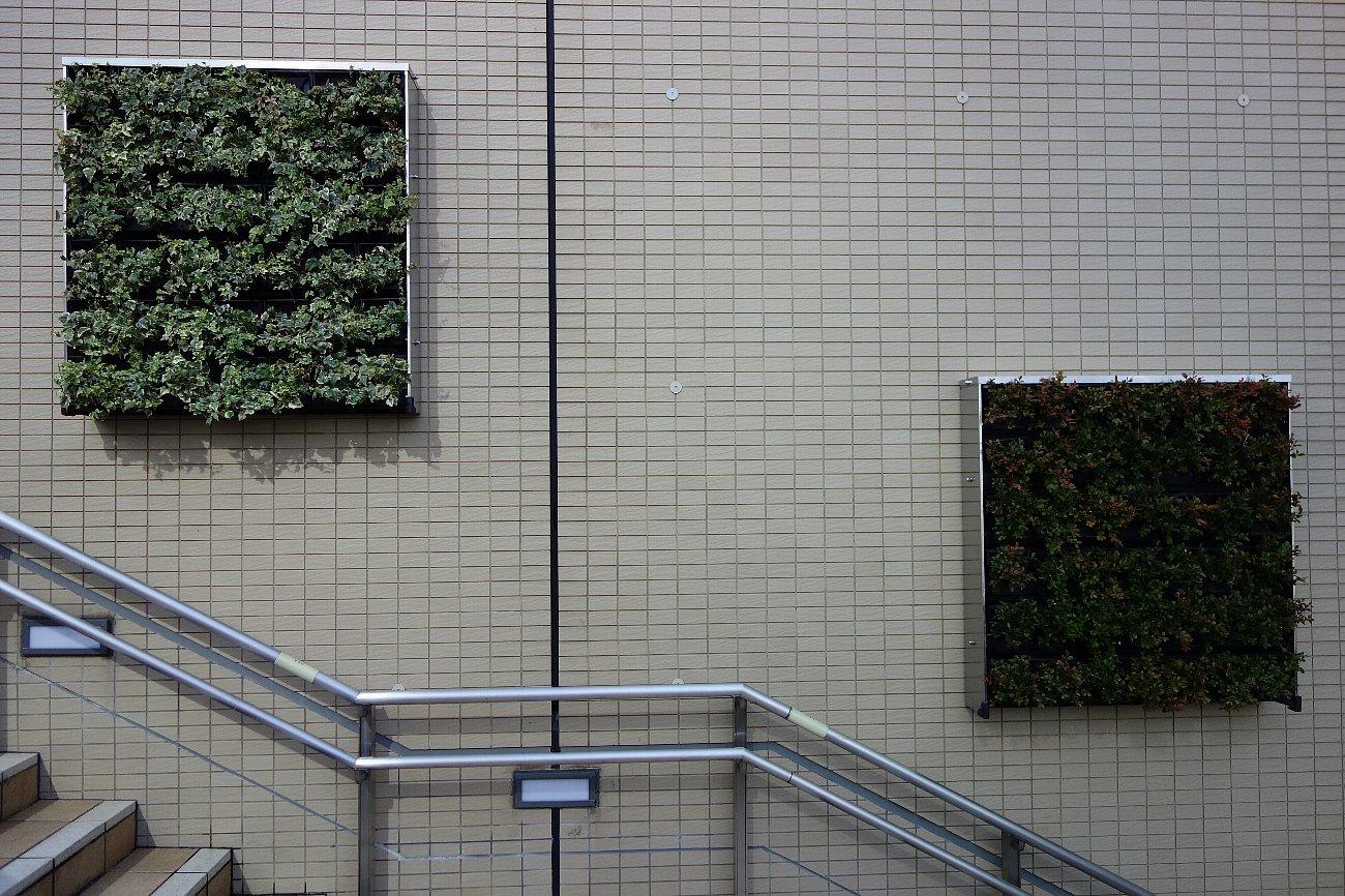 大阪ステーションシティ  天空の農園_c0112559_09044282.jpg