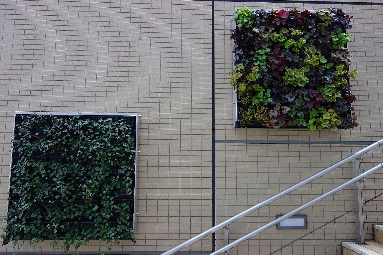 大阪ステーションシティ  天空の農園_c0112559_09045879.jpg