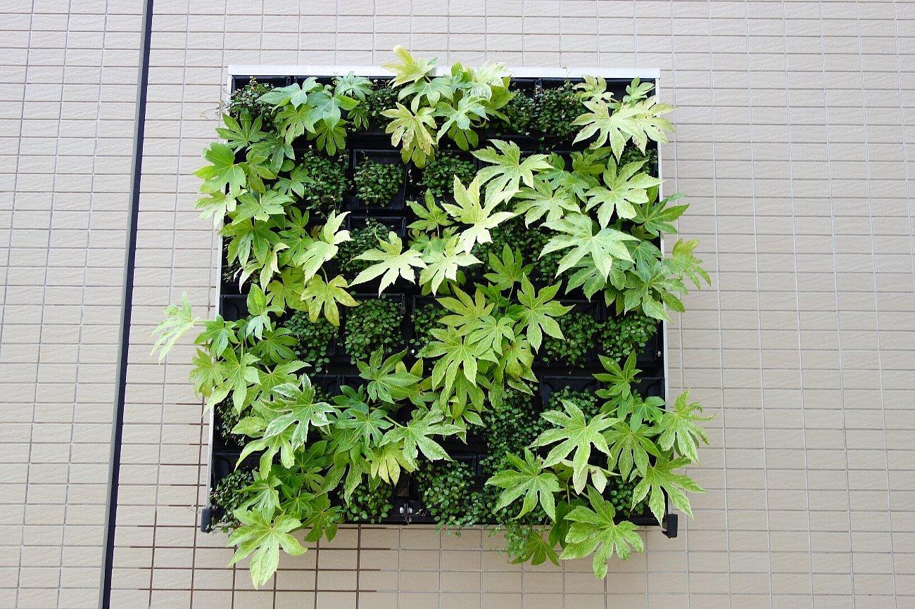 大阪ステーションシティ  天空の農園_c0112559_09053791.jpg