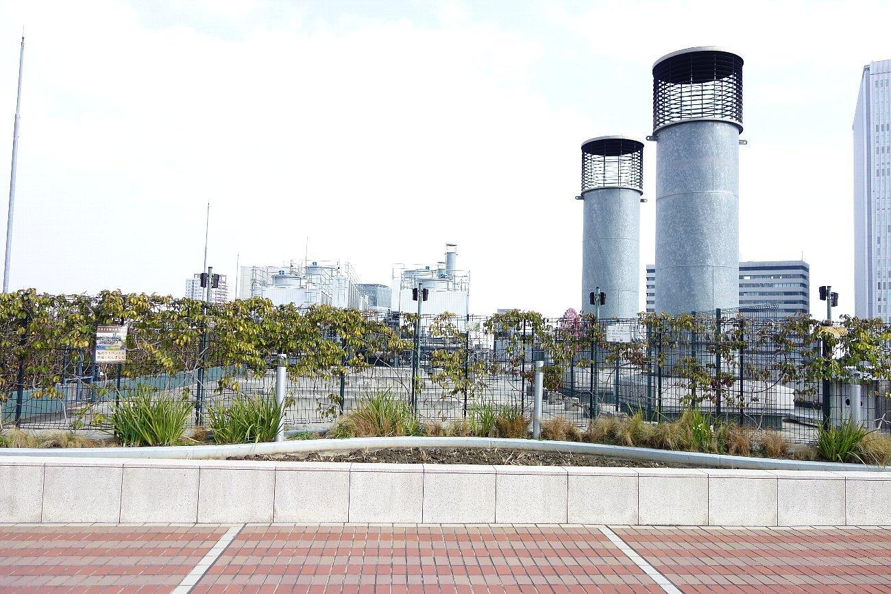 大阪ステーションシティ  天空の農園_c0112559_09084393.jpg
