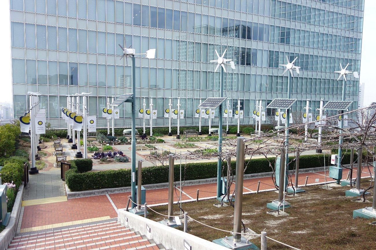 大阪ステーションシティ  天空の農園_c0112559_09095387.jpg