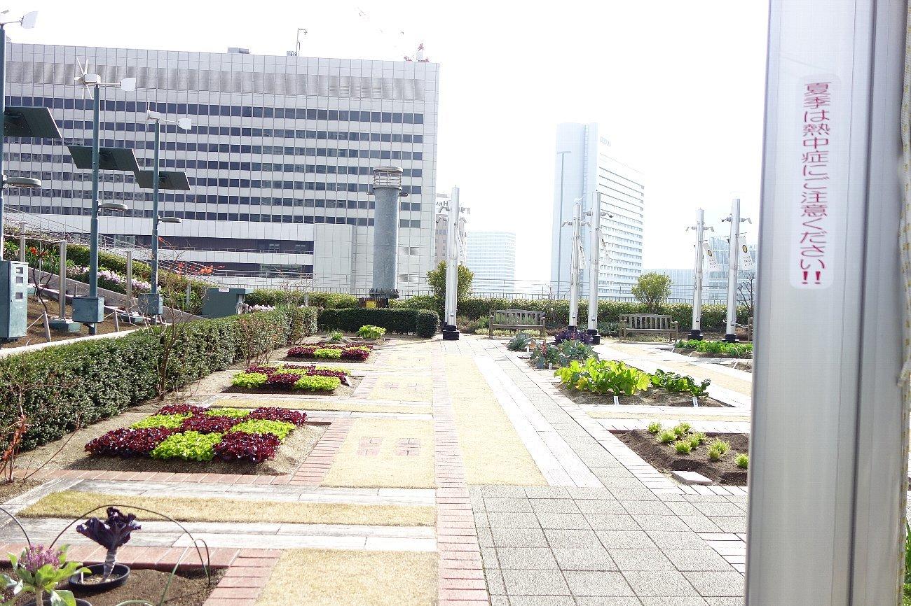大阪ステーションシティ  天空の農園_c0112559_09111183.jpg