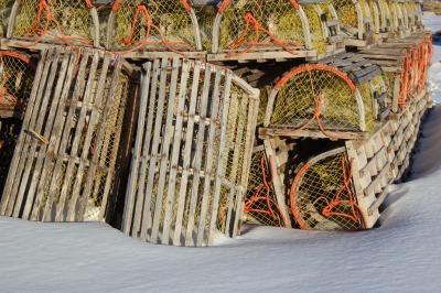 冬のNorth Rustico 3_c0353373_23030970.jpg