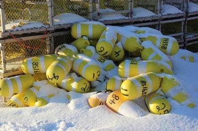 冬のNorth Rustico 3_c0353373_23032446.jpg