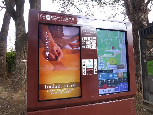 代々木公園の河津桜、きれいだったよ~♪ ミモザもね♪_b0287088_16051173.jpg