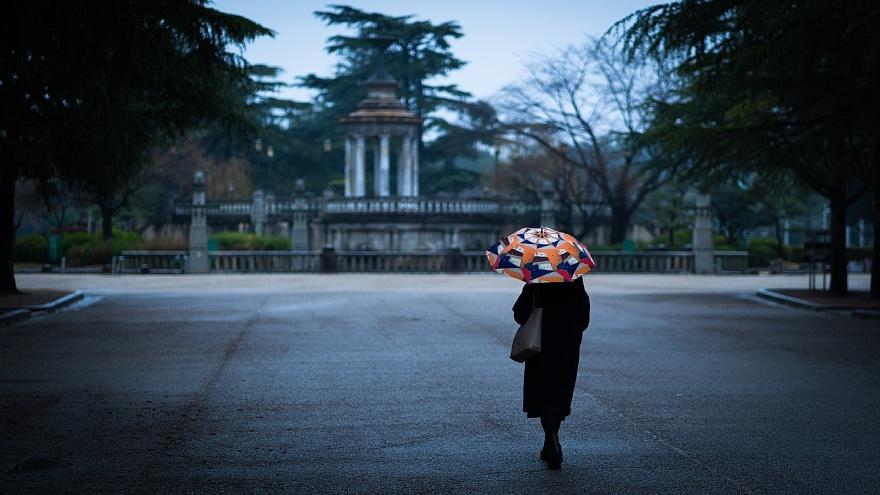 雨に負けない色たち_d0353489_00454456.jpg